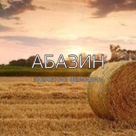 Происхождение фамилии Абазин