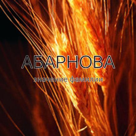 Происхождение фамилии Абарнова