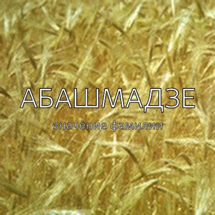 Происхождение фамилии Абашмадзе