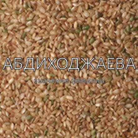 Происхождение фамилии Абдиходжаева