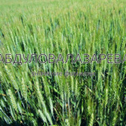 Происхождение фамилии Абдуловалазарева