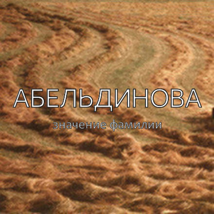 Происхождение фамилии Абельдинова