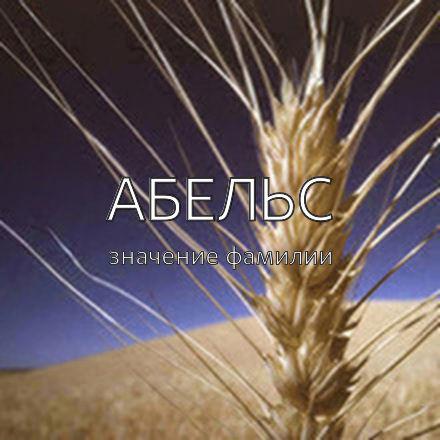 Происхождение фамилии Абельс