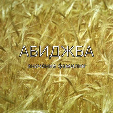 Происхождение фамилии Абиджба