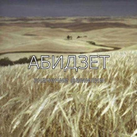 Происхождение фамилии Абидзет