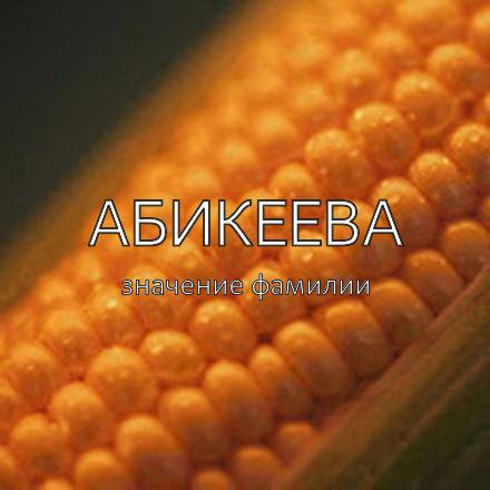 Происхождение фамилии Абикеева