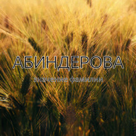 Происхождение фамилии Абиндерова