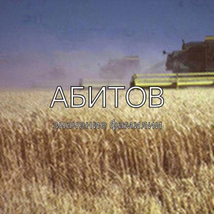 Происхождение фамилии Абитов