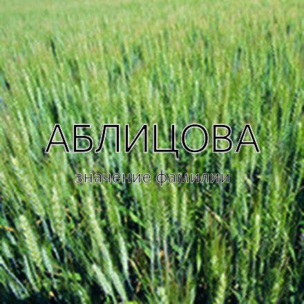 Происхождение фамилии Аблицова