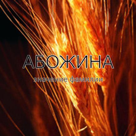 Происхождение фамилии Абожина