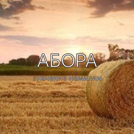 Происхождение фамилии Абора