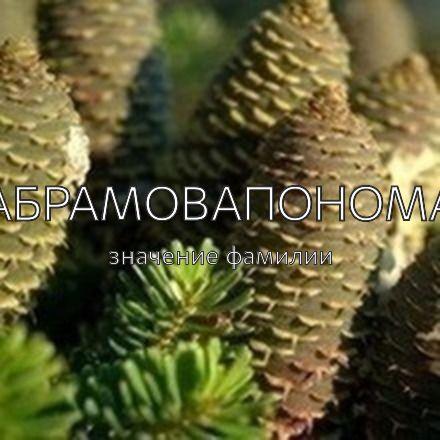 Происхождение фамилии Абрамовапонома
