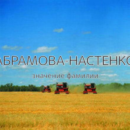 Происхождение фамилии Абрамова-Настенко