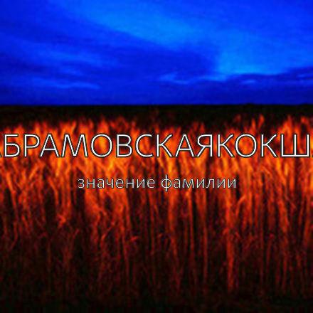 Происхождение фамилии Абрамовскаякокша
