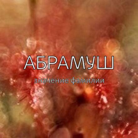 Происхождение фамилии Абрамуш