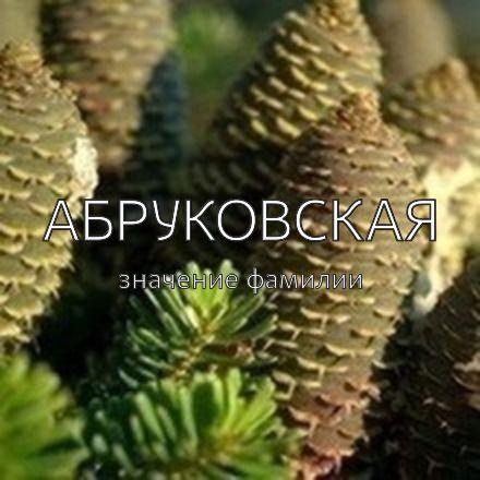 Происхождение фамилии Абруковская