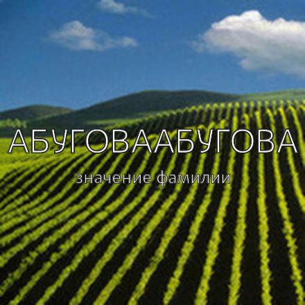 Происхождение фамилии Абуговаабугова