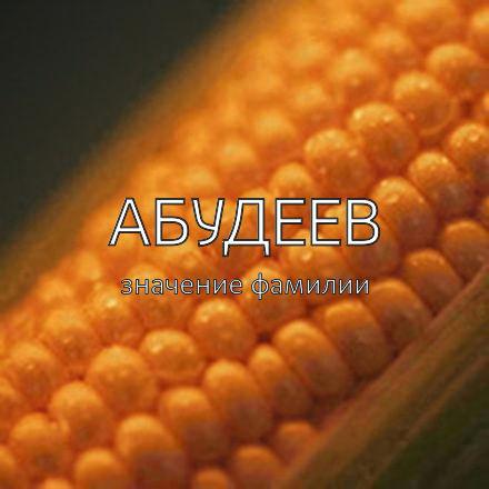 Происхождение фамилии Абудеев