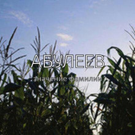 Происхождение фамилии Абулеев