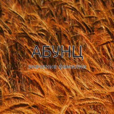 Происхождение фамилии Абунц