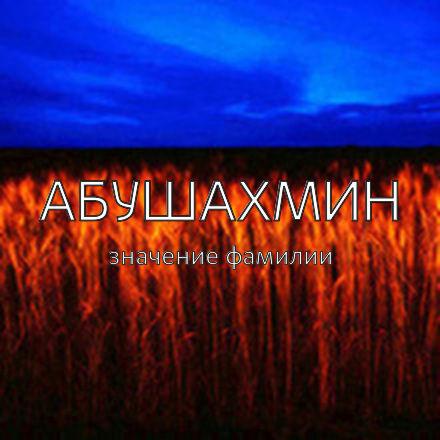 Происхождение фамилии Абушахмин