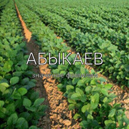Происхождение фамилии Абыкаев
