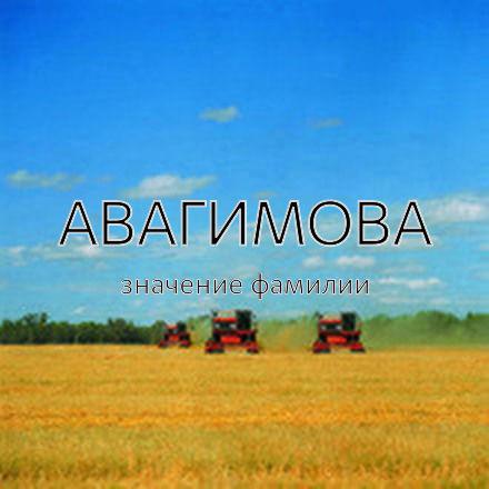 Происхождение фамилии Авагимова