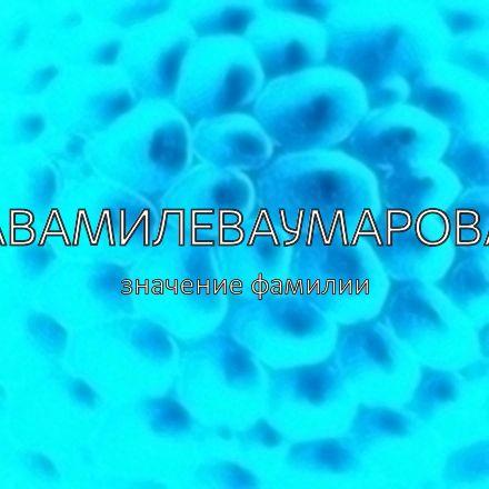 Происхождение фамилии Авамилеваумарова