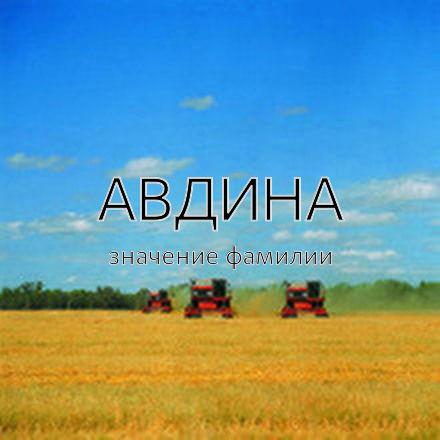 Происхождение фамилии Авдина