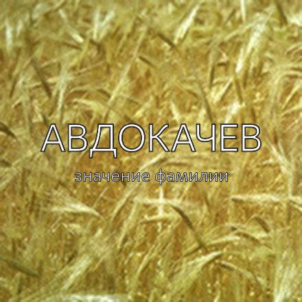 Происхождение фамилии Авдокачев