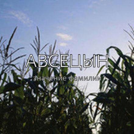 Происхождение фамилии Авсецын