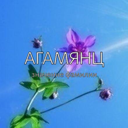 Происхождение фамилии Агамянц