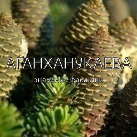 Происхождение фамилии Аганханукаева