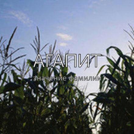 Происхождение фамилии Агапит