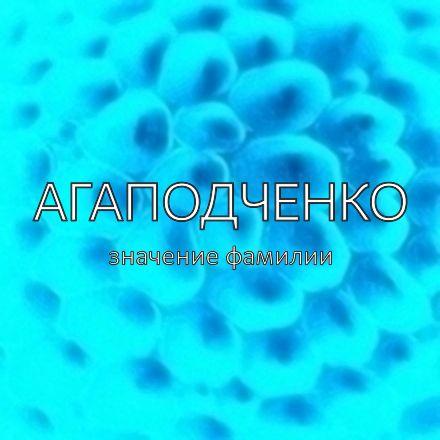 Происхождение фамилии Агаподченко