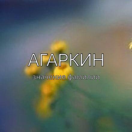 Происхождение фамилии Агаркин