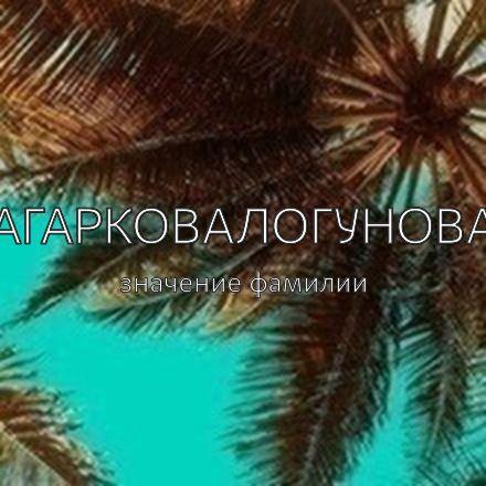 Происхождение фамилии Агарковалогунова