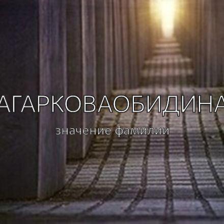 Происхождение фамилии Агарковаобидина