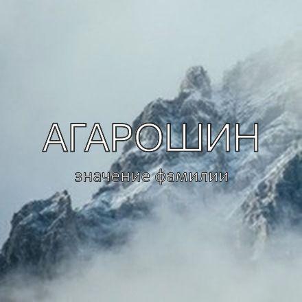 Происхождение фамилии Агарошин
