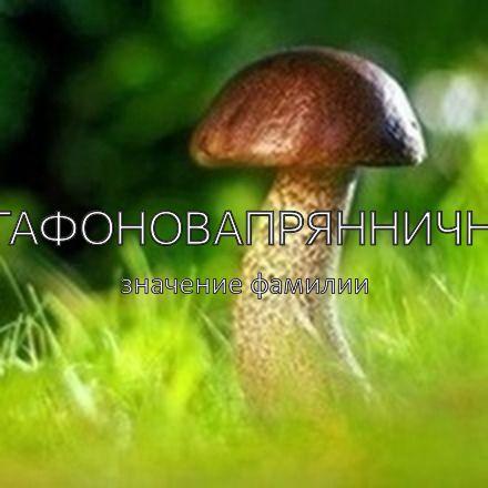 Происхождение фамилии Агафоновапряннични