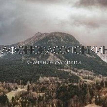 Происхождение фамилии Агафоновасолонкина