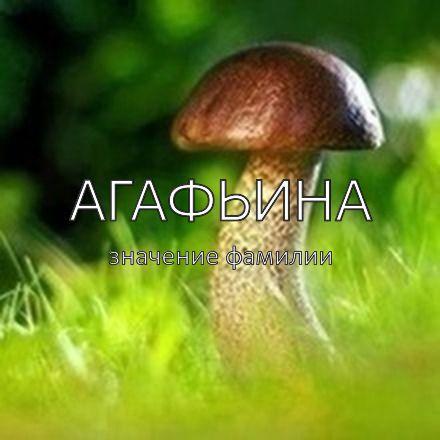 Происхождение фамилии Агафьина