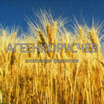 Происхождение фамилии Агеенкорусчев
