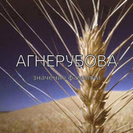 Происхождение фамилии Агнерубова
