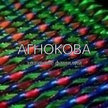 Происхождение фамилии Агнокова