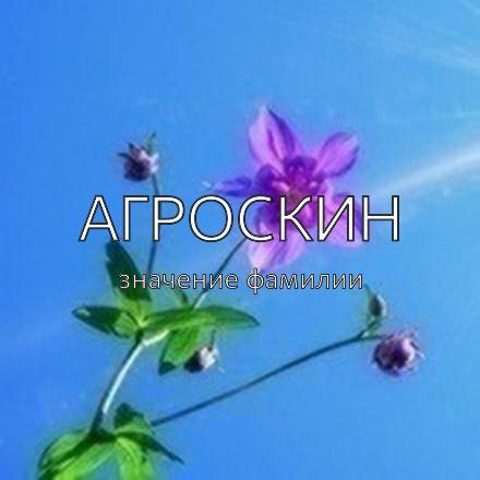 Происхождение фамилии Агроскин