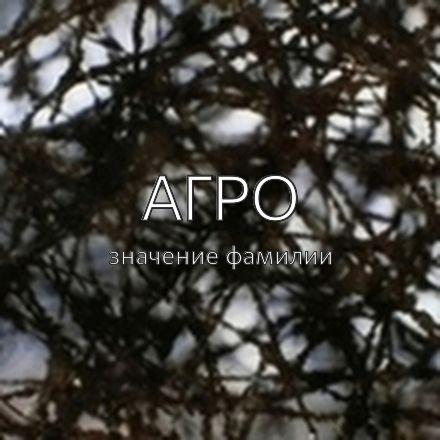 Происхождение фамилии Агро
