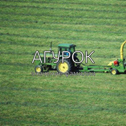Происхождение фамилии Агурок
