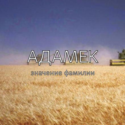 Происхождение фамилии Адамек
