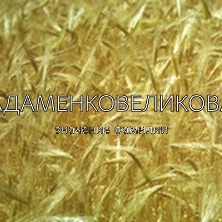 Происхождение фамилии Адаменковеликова